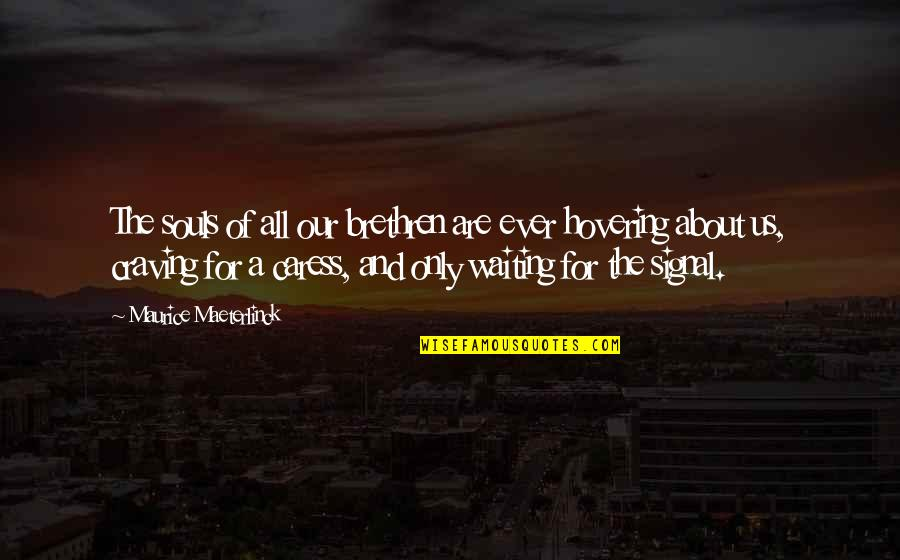 Rapporteur Quotes By Maurice Maeterlinck: The souls of all our brethren are ever