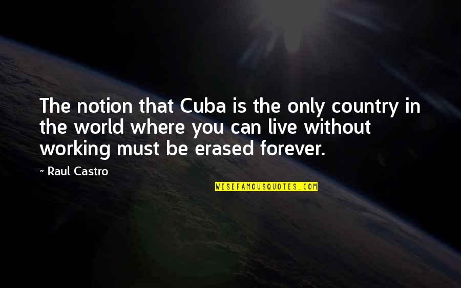 Raul Quotes By Raul Castro: The notion that Cuba is the only country