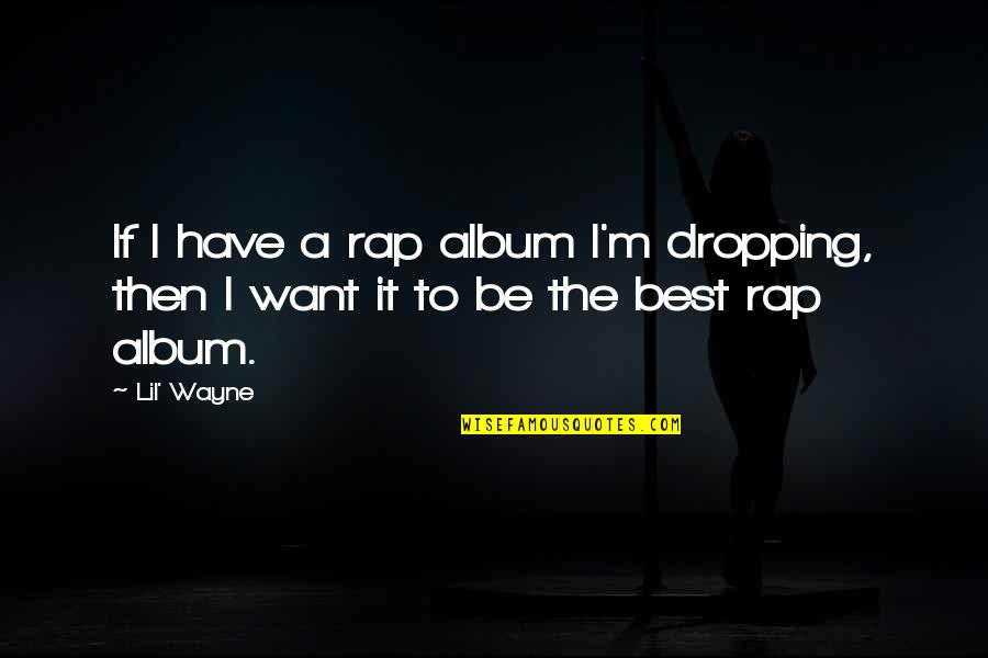 Raven By Lauren Oliver Quotes By Lil' Wayne: If I have a rap album I'm dropping,
