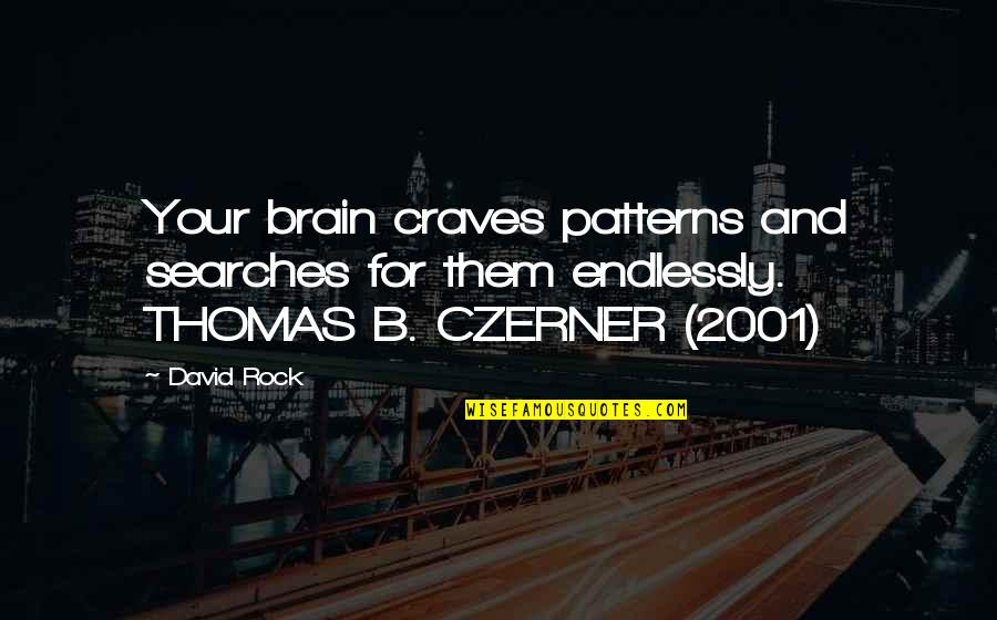 Ray Davey Quotes By David Rock: Your brain craves patterns and searches for them