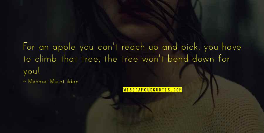 Reach Up Quotes By Mehmet Murat Ildan: For an apple you can't reach up and