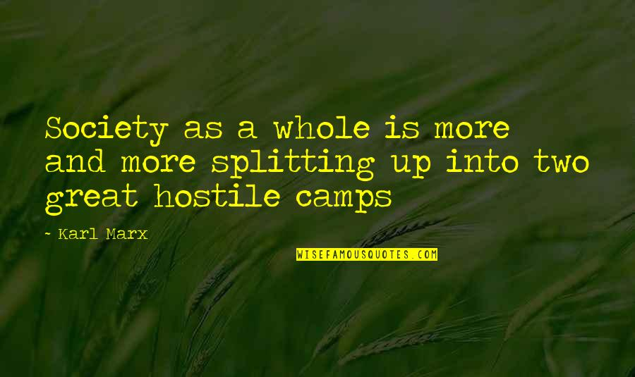 Reaching Personal Goals Quotes By Karl Marx: Society as a whole is more and more