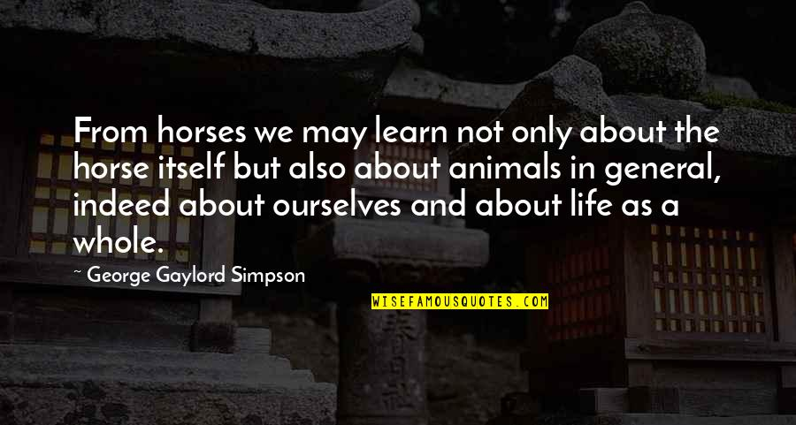Reading Posters Quotes By George Gaylord Simpson: From horses we may learn not only about