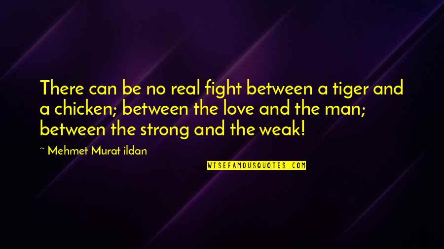Real Love Quotes By Mehmet Murat Ildan: There can be no real fight between a