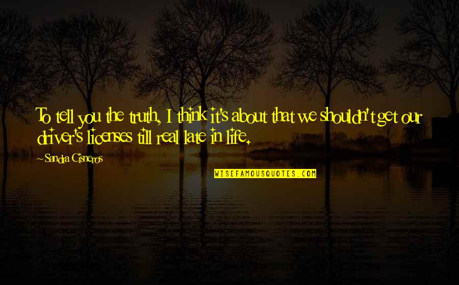 Real Truth About Life Quotes By Sandra Cisneros: To tell you the truth, I think it's