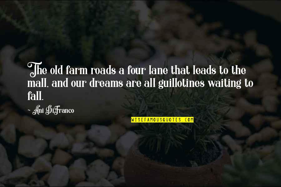 Reality And Dreams Quotes By Ani DiFranco: The old farm roads a four lane that