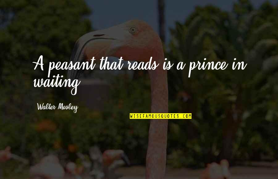 Realization About Friends Quotes By Walter Mosley: A peasant that reads is a prince in