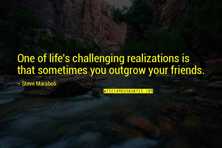 Realizations Quotes By Steve Maraboli: One of life's challenging realizations is that sometimes