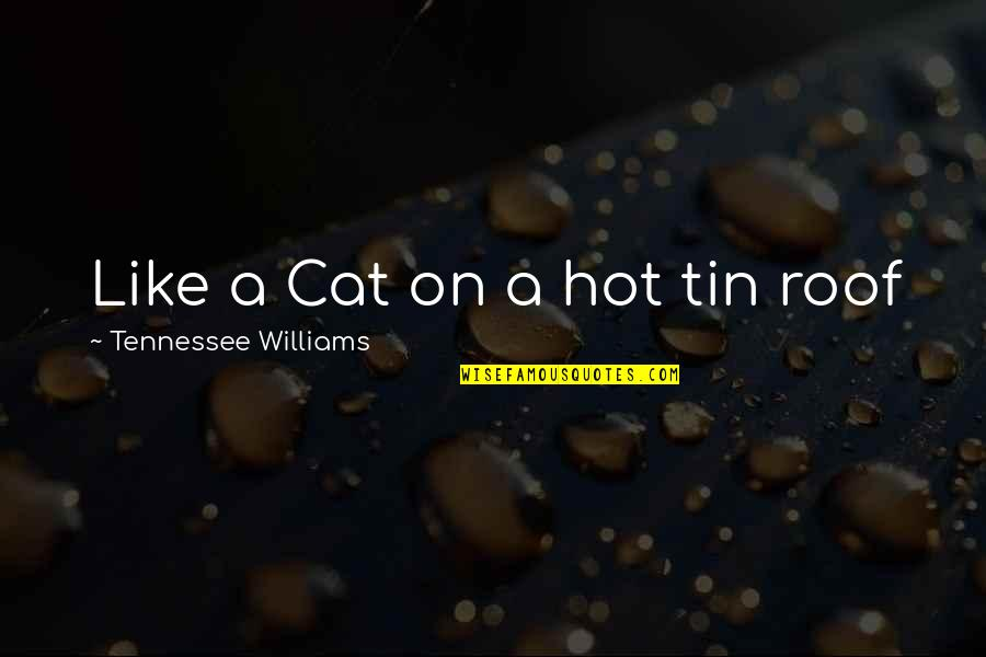 Really Nice And Sweet Quotes By Tennessee Williams: Like a Cat on a hot tin roof