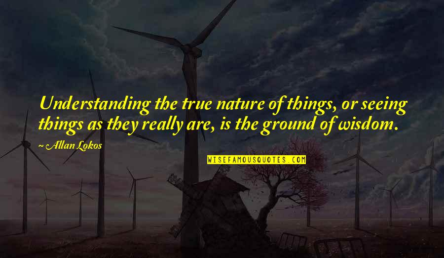 Really Seeing Quotes By Allan Lokos: Understanding the true nature of things, or seeing