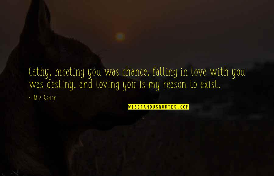 Reason And Love Quotes By Mia Asher: Cathy, meeting you was chance, falling in love
