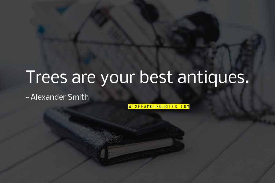 Rec Therapy Quotes By Alexander Smith: Trees are your best antiques.