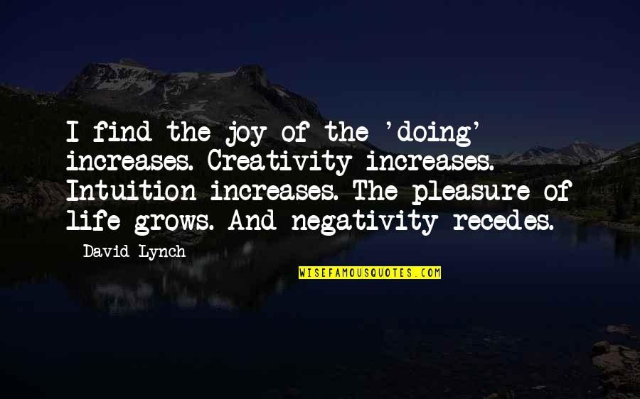Recedes Quotes By David Lynch: I find the joy of the 'doing' increases.