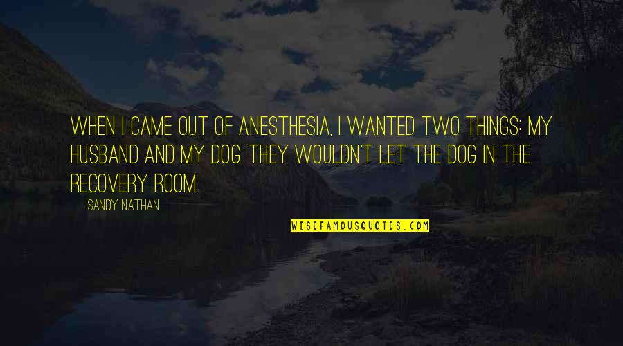 Recovery Inspirational Quotes By Sandy Nathan: When I came out of anesthesia, I wanted