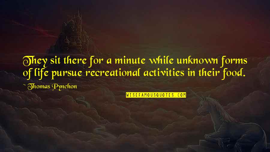 Recreational Quotes By Thomas Pynchon: They sit there for a minute while unknown