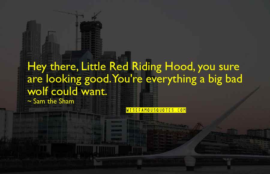 Red Riding Hood Quotes By Sam The Sham: Hey there, Little Red Riding Hood, you sure