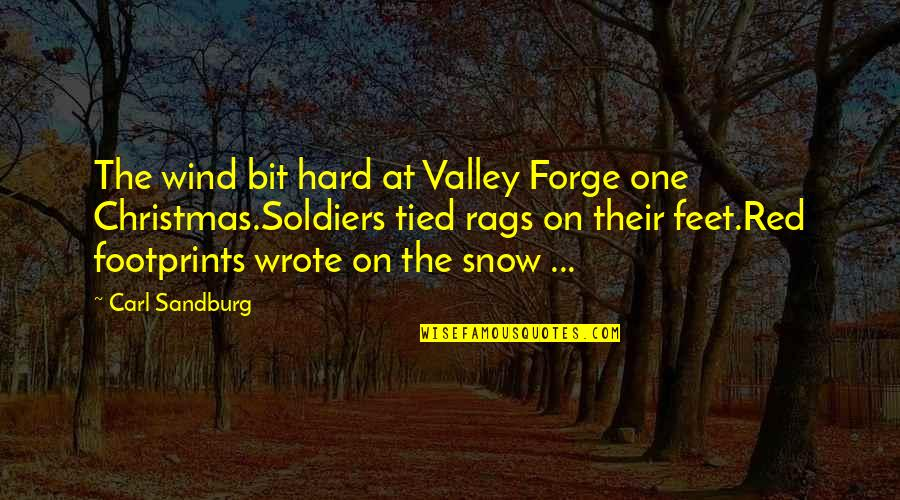 Red Wind Quotes By Carl Sandburg: The wind bit hard at Valley Forge one
