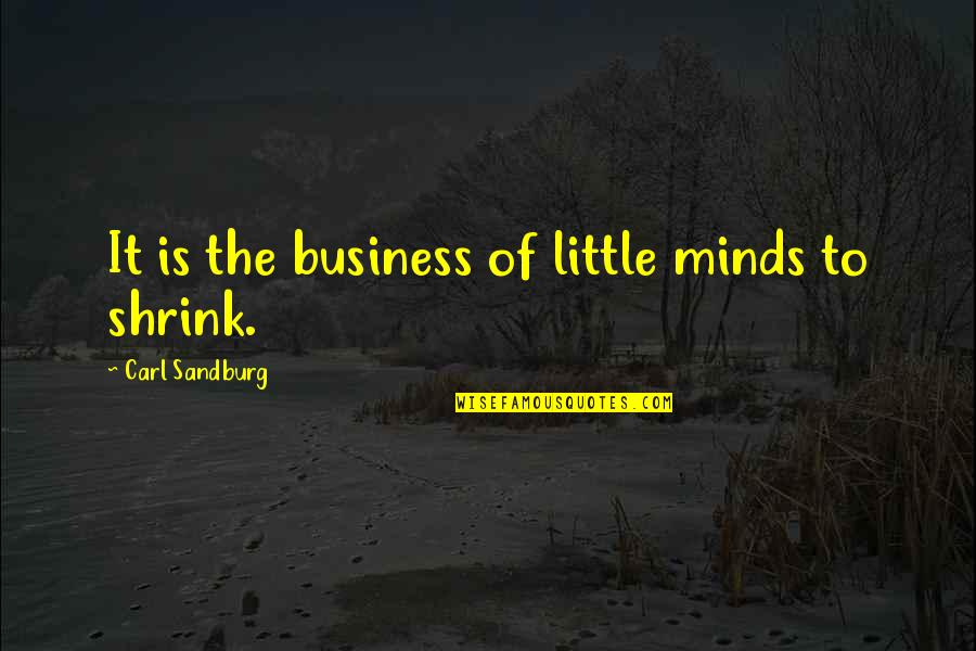 Reflection Of God's Love Quotes By Carl Sandburg: It is the business of little minds to