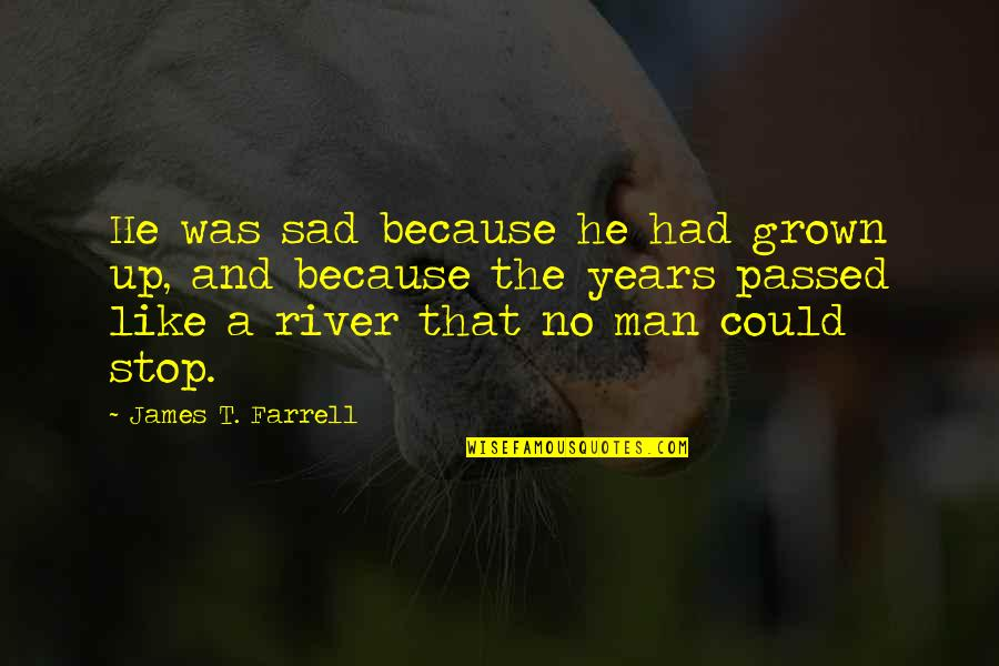 Reflection Of God's Love Quotes By James T. Farrell: He was sad because he had grown up,