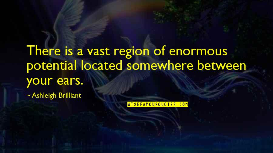 Region Quotes By Ashleigh Brilliant: There is a vast region of enormous potential