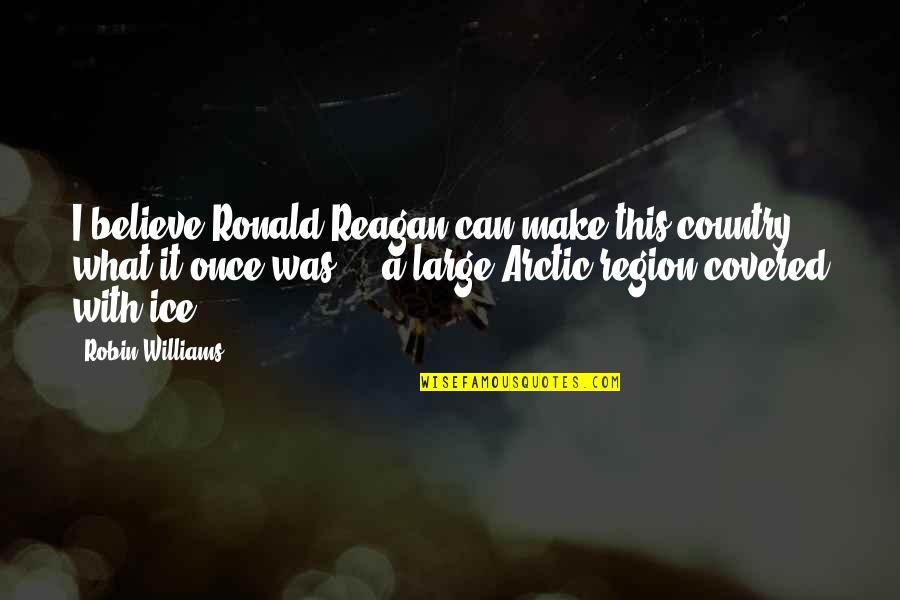 Region Quotes By Robin Williams: I believe Ronald Reagan can make this country