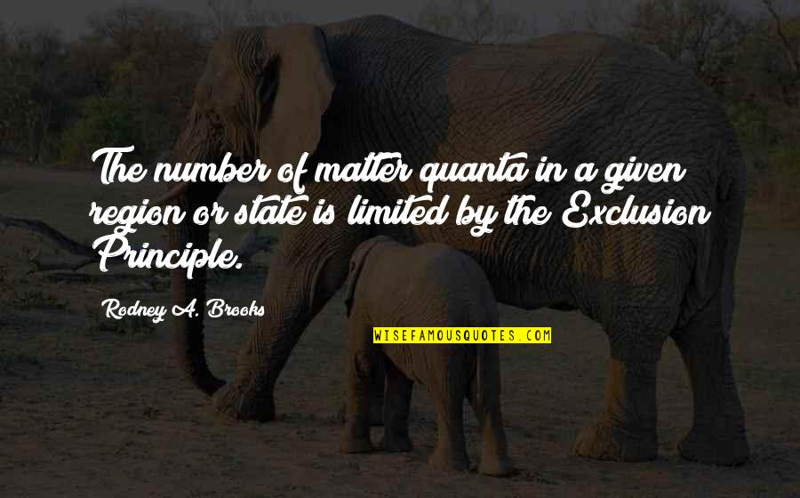 Region Quotes By Rodney A. Brooks: The number of matter quanta in a given