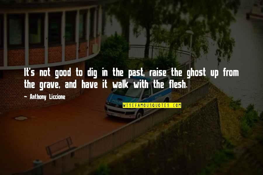Regrets From The Past Quotes By Anthony Liccione: It's not good to dig in the past,