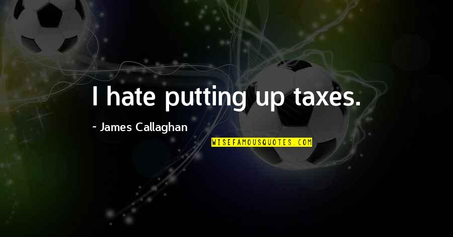 Reichelt Quotes By James Callaghan: I hate putting up taxes.