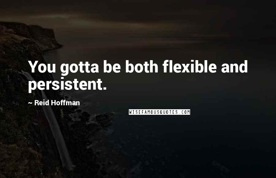 Reid Hoffman quotes: You gotta be both flexible and persistent.