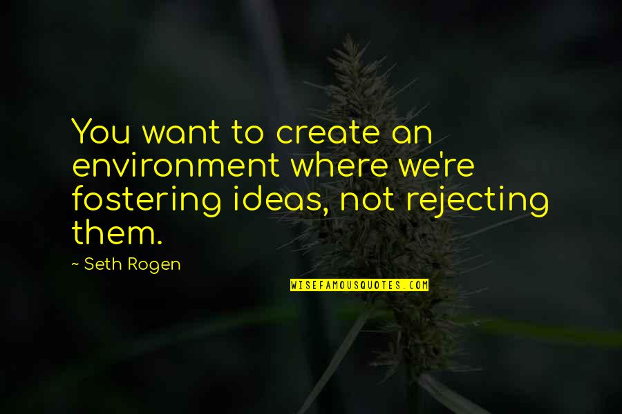 Rejecting You Quotes By Seth Rogen: You want to create an environment where we're