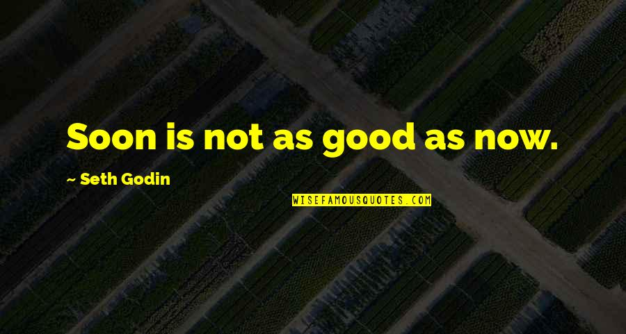 Relasinsips Quotes By Seth Godin: Soon is not as good as now.