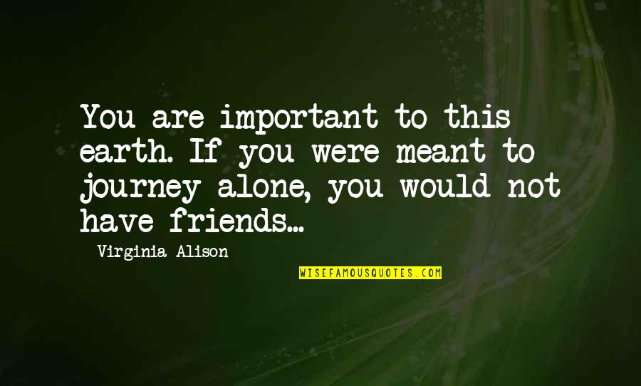 Relationships That Are Not Meant To Be Quotes By Virginia Alison: You are important to this earth. If you