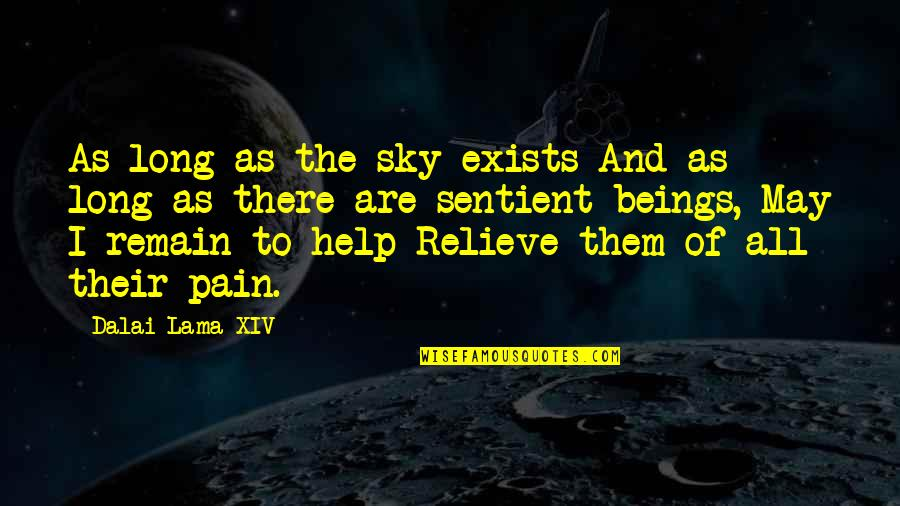 Relieve Pain Quotes By Dalai Lama XIV: As long as the sky exists And as