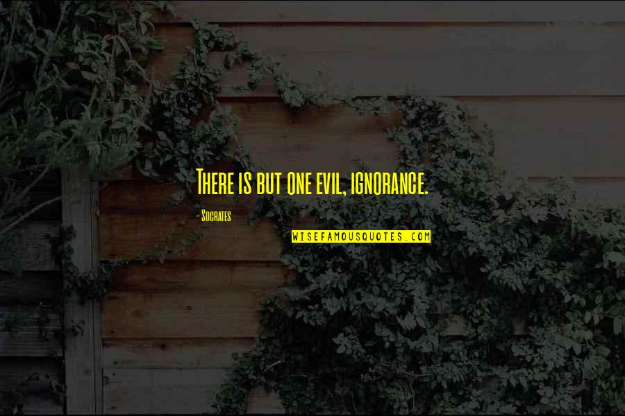 Religion And Ignorance Quotes By Socrates: There is but one evil, ignorance.