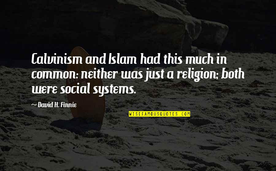 Religion Islam Quotes By David H. Finnie: Calvinism and Islam had this much in common: