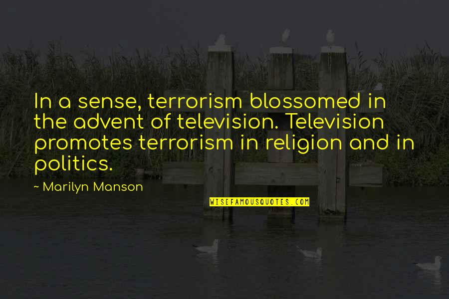 Religion Politics Quotes By Marilyn Manson: In a sense, terrorism blossomed in the advent