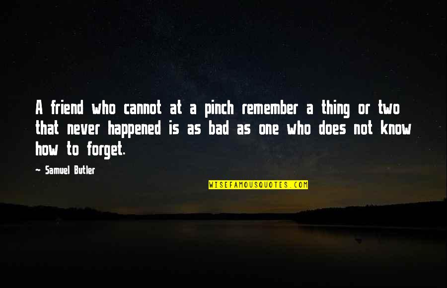 Remember One Thing Quotes By Samuel Butler: A friend who cannot at a pinch remember