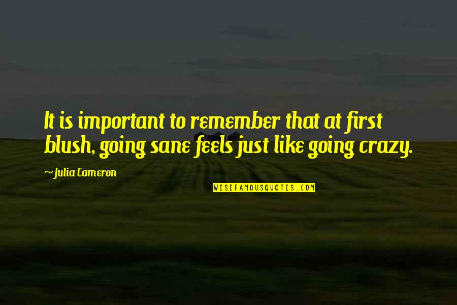 Remember That Quotes By Julia Cameron: It is important to remember that at first