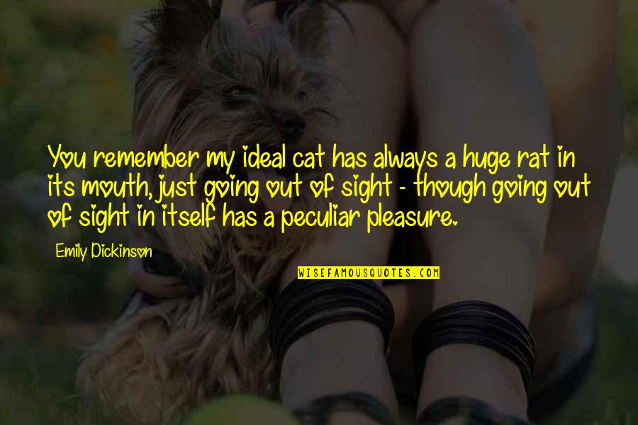 Remember You Always Quotes By Emily Dickinson: You remember my ideal cat has always a
