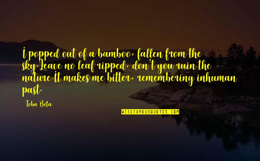 Remembering You Quotes By Toba Beta: I popped out of a bamboo, fallen from