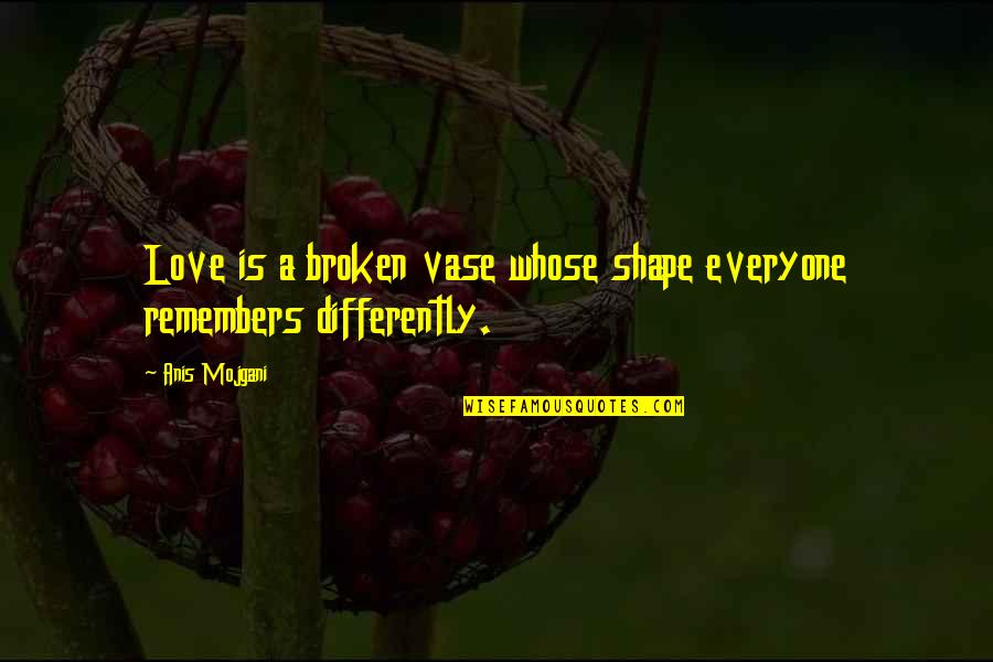 Remembers Quotes By Anis Mojgani: Love is a broken vase whose shape everyone