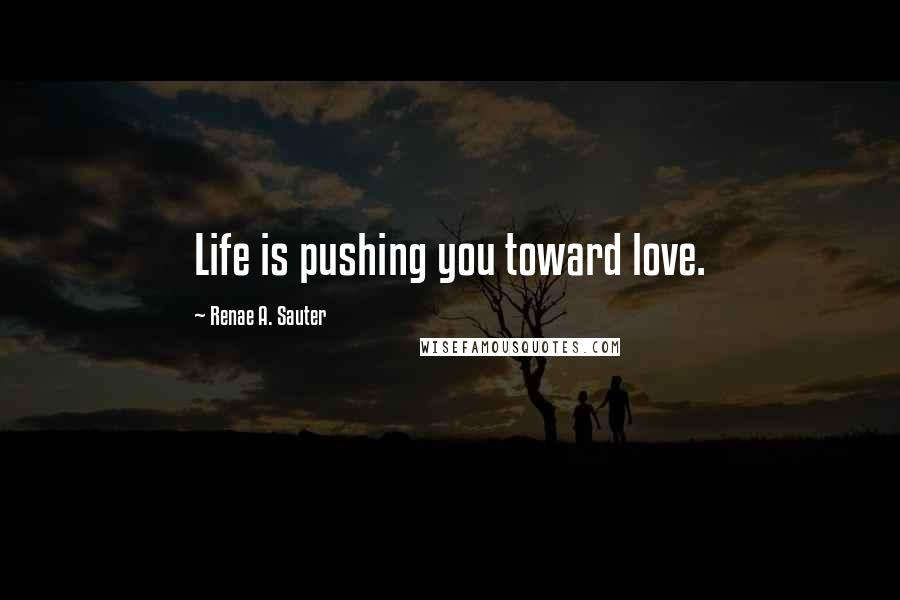 Renae A. Sauter quotes: Life is pushing you toward love.