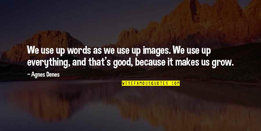 Renaud's Quotes By Agnes Denes: We use up words as we use up