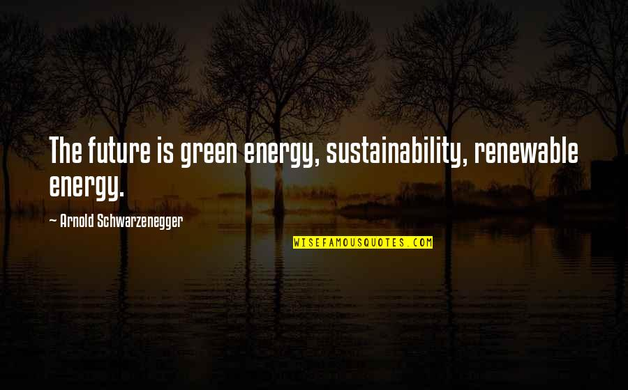 Renewable Energy Future Quotes By Arnold Schwarzenegger: The future is green energy, sustainability, renewable energy.