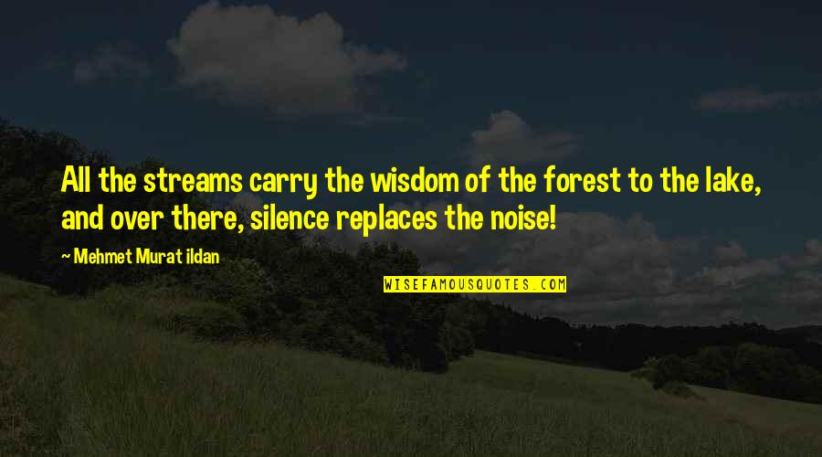 Replaces Quotes By Mehmet Murat Ildan: All the streams carry the wisdom of the