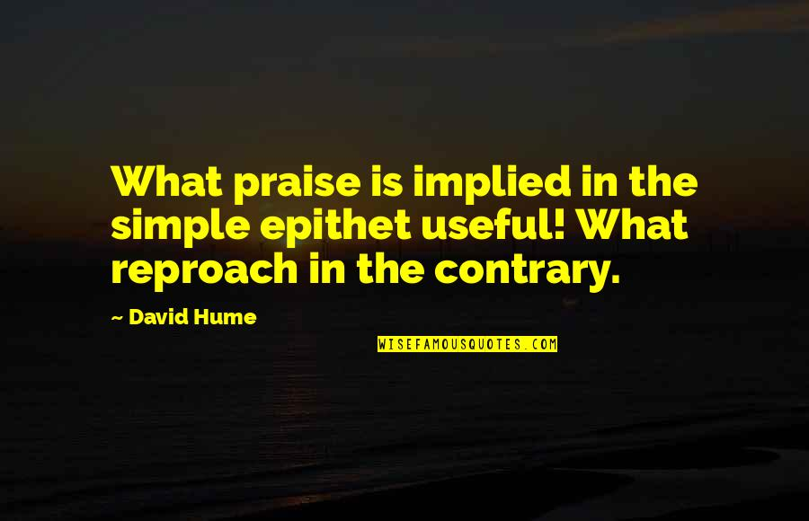 Reproach Quotes By David Hume: What praise is implied in the simple epithet