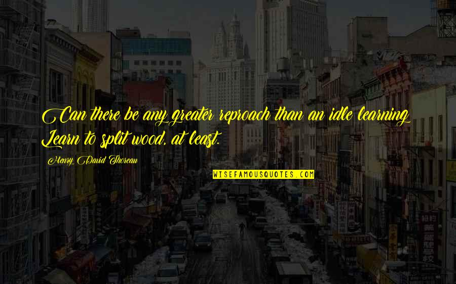 Reproach Quotes By Henry David Thoreau: Can there be any greater reproach than an