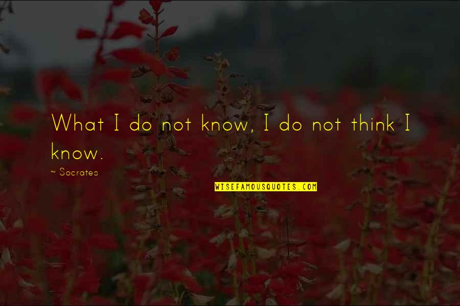 Repulsiveness Quotes By Socrates: What I do not know, I do not