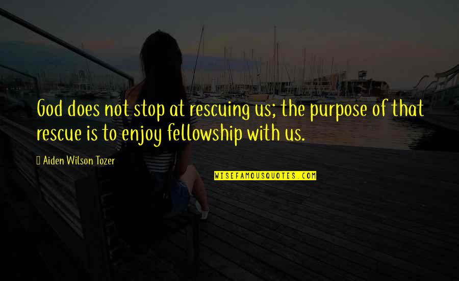 Rescuing Quotes By Aiden Wilson Tozer: God does not stop at rescuing us; the