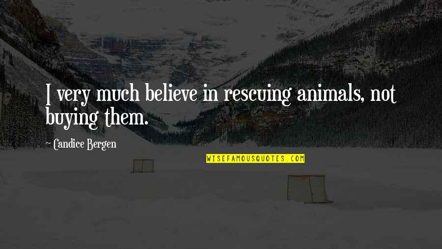 Rescuing Quotes By Candice Bergen: I very much believe in rescuing animals, not